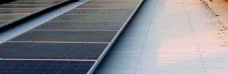 Bird droppings on rooftop solar panels